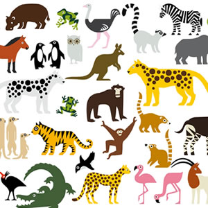 Animal Songs Lyrics Quiz