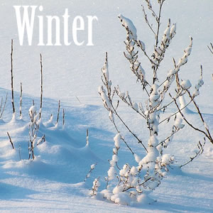 Winter Song Lyrics Quiz